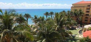 eau palm